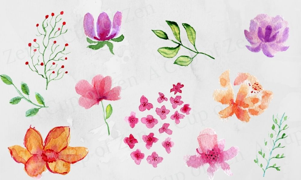 Flowers and Leaves Watercolor Graphics