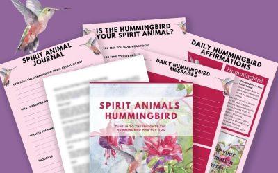 Spirit Animals – Hummingbird